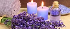 What are the benefits of lavender floral water? In addition, lavender floral water is also an ally against lice. Home Remedies For Scabies, Natural Home Remedies, Herbal Remedies, Essential Oils For Depression, Essential Oils For Sleep, Lavender Oil For Hair, Lavender Flowers, Lavender Fields, Natural Sleeping Pills
