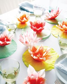 Coffee Filter Water-lillies