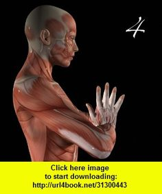 Anatomy of Yoga - Warrior, Scale, Upward Plank Poses, iphone, ipad, ipod touch, itouch, itunes, appstore, torrent, downloads, rapidshare, megaupload, fileserve