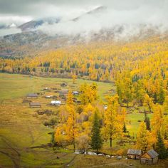 Kanas Valley #autumn #amazing #china #discover #explore #fall #houses #instagram #instashot #journey #kanas #landscape #mountains #nature #photography #photo #photogram #picturesque #travelphotography #travel #travelgram #urban #vacation #xinjiang