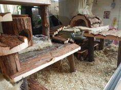 Natural hamster cage / hamster terra / terrarium / habitat / wood