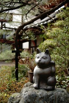 2泊1日の旅: 京都 2008年1月 : 一日一膳