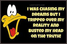 I was chasing my dreams funny quotes quote funny quote funny quotes looney toons daffy duck