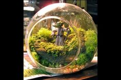 10 Creative Ways to Display Plants I would substitute this with Gandalf and the rest of the Fellowship