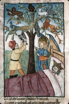 Songe de Nabuchodonosor : l'arbre abattu (XVe) Ars moriendi, Bibliothèque Municipale de Marseille