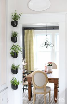 How to create a Vertical Modern Herb Garden for your Kitchen | Inspired by Charm