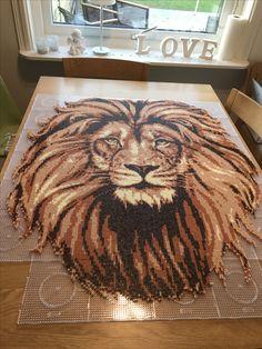 Super large lion