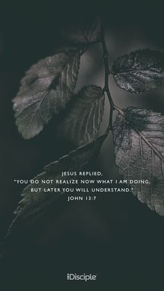 """Jesus replied, """"You do not realize now what I am doing, but later you will understand."""" 