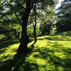Helsinki summertime park