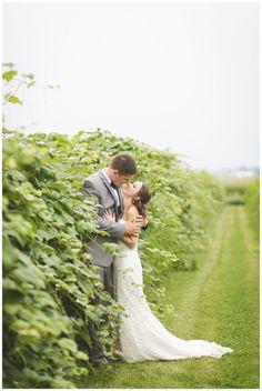 Mackinaw Valley Vineyard Wedding by Rachael Schirano Photography | Central Illinois Wedding Photographer