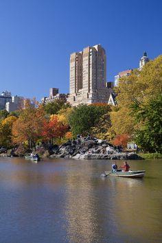 Central Park, New York City, USA (Gavin Hellier)