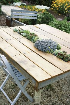 succulent table This would work in some ecosystems. I wonder what other plants could be used for a similar effect?