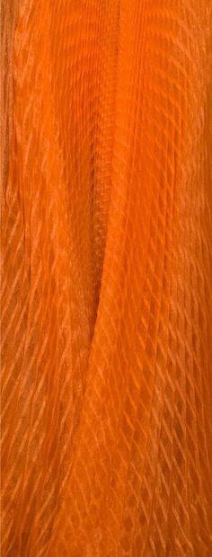 Orange You Glad, Orange Is The New, Orange Twist, Orange Color, Oranges And Lemons, Orange Crush, Rainbow Colors, Aesthetics, Palette