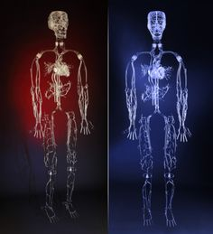 Neat idea: Farlow Scientific Glassblowing creates blown glass models of parts of the body for use in testing medical devices, with applications including stent placement, catheter insertion and defibrillator lead placement.