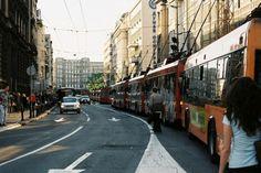 Only in Belgrade...