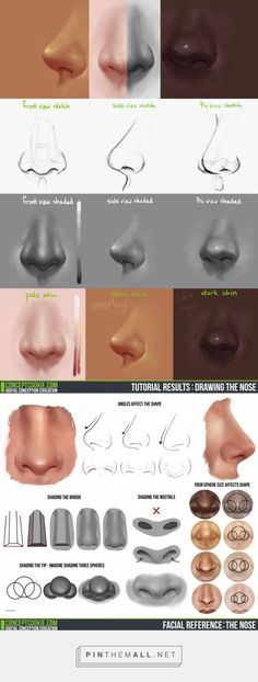 Tim Von Rueden takes you through drawing the nose in a front, side, and ¾ view: http://conceptcookie.tumblr.com/post/87229828821/drawing-the-nose-v… | Pinterest: