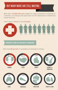 Infographic: Just How Hard Is It To Get An Organ Transplant? | Co.Design: business + innovation + design