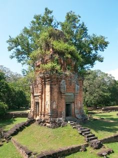 Tower at the Bakong temple with trees growing out of the roof, in the Roluos Group, west of Siem Reap, Cambodia. Stock Photo