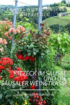 So kannst Du Kitzeck im Sausal und die Sausaler Weinstraße perfekt genießen. Teenager, Roadtrip, Kind, Outdoor, Plants, Travel, Holiday Destinations, Adventure Awaits, Beautiful Landscapes