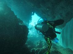 Our aquanauts doing some underwater exploration on a fish spot training dive #GVI #PezMaya #volunteer #diving