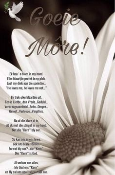 Good Morning Wishes, Good Morning Quotes, Lekker Dag, Simply Life, Afrikaanse Quotes, Goeie More, He Loves Me, Special Quotes, Blessings