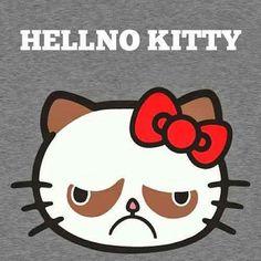 hell no kitty
