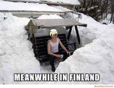Aiheeseen liittyvä kuva Meanwhile In Finland
