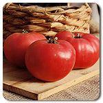 Organic Rose de Berne Tomato