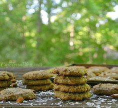 Almond Toasted Coconut Cookies (Perfect Protein Snack!)