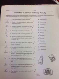 Printables Branches Of Science Worksheet Kerriwaller Matching Activity Jasmines Blog This