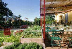 Green restaurant (con orto!) per tranquille serate estive: Erba Brusca. Atmosfera magica, lontana dal brusio-zona Navigli