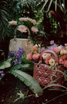 Models Clementine Deraedt, Shanna Jackway and Eliza Thomas garden with fashion passion in 'Belles Plantes', styled by Irina Marie . Photographer Michal Pudelka captures the hothouse scene for Numero October Hair by Ali Pirzadeh; makeup by Sharon Dowsett Photography Bags, Still Life Photography, Fashion Photography, Lady Dior, Kreative Portraits, Fashion Still Life, Belle Plante, Ootd, For Love And Lemons