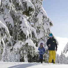 Skiing with the family at Mount Washington Alpine Resort.  Cool yellow ski pants.  Photo from @ chrislennonski Instagram.
