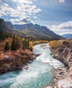 Осенние краски реки Чуи, Алтай