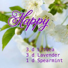Happy diffuser blend: litsea/may chang, lavender, spearmint essential oils