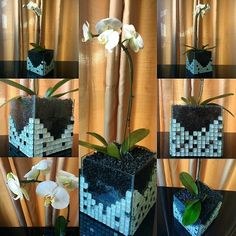 Linha Lounge Orquidea Floreira Cristal Lounge, Plants, Line, Crystals, Gifts, Celtic, Airport Lounge, Drawing Rooms, Lounge Music