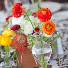 Ranunculus and textural blooms topped the tables.....from the album: A Bright Outdoor Wedding in Saugatuck, MI