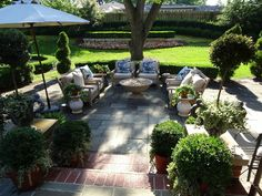 The French Tangerine: ~ patio part two and a nest