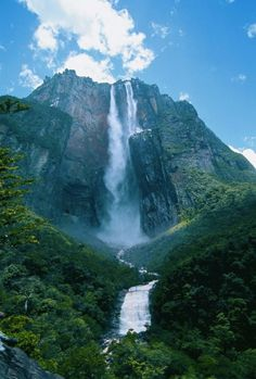Angel Falls is the highest waterfall in the world - Canaima National Park, Venezuela