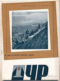 TYP Book Art, Polaroid Film