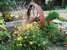 Natural country charm marries the old wagon wheels with Blanket Flower (Gaillardia sp.), Sweet Alyssum, California Poppy, Eyebrow Grass (Bouteloua gracilis) and other flowers. Design by Katrina Fairchild