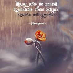 Soul Quotes, Wise Quotes, Famous Quotes, Inspirational Quotes, The Words, Russian Quotes, Positive Phrases, Truth Of Life, Status Quotes