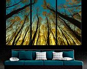 """3 Panel Split (Triptych) Canvas Print of Trees in forest. 1.5"""" deep frames - Nature photography for living room decor & interior design.."""