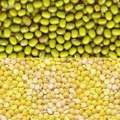 Mung Bean Ayurvedic Medicinal Properties