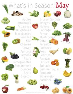 What's in Season May Apples • Artichokes • Asparagus • Blueberries • Blackberries • Bananas • Kiwi • Cherries • Chives • Apricots • Lemons • Pears • Pomegranates • Persimmons • Quinces • Beets • Broccoli • Brussel Sprouts • Mangos • Melons • Cabbages • Fennel • Mushrooms • Okra • Parsnips • Potatoes • Peaches • Papayas • Lettuce • Spinach • Summer Squash • Rhubarb • Spring peas • Watermelon • Zucchini