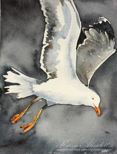 I most often use Arches watercolor paper rough and fine 140 lb (a few of these paintings though are made on Fabriano Artistico fine and rou. Arches Watercolor Paper, Watercolor Sketch, Watercolor Bird, Watercolor Animals, Watercolor Landscape, Watercolour Painting, Watercolors, Urban Sketching, Sea Birds