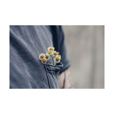 porclaim: a pocket full of flowers by ceceyy... ❤ liked on Polyvore featuring blue, pictures, backgrounds, photos and pics