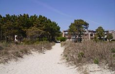 Things to do at the beach: Kids Beach Vacations Hilton Head Island South Carolina
