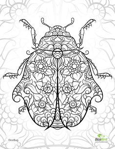 DiceBug LadyBug