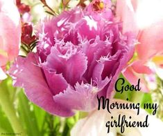 Looking for for inspiration for good morning motivation?Check out the post right here for unique good morning motivation ideas. These amuzing quotes will brighten your day. Good Morning Wishes Love, Good Morning For Her, Flirty Good Morning Quotes, Good Morning Romantic, Good Morning Handsome, Morning Greetings Quotes, Good Morning Sunshine, Good Morning Picture, Good Morning Flowers